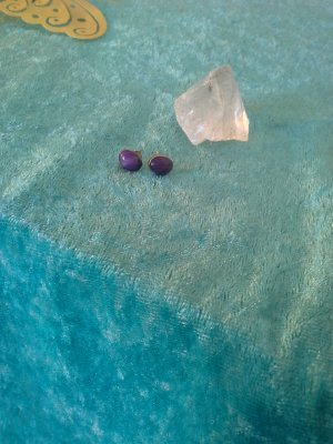 Oorstekers blauw-paars-lila Zilver
