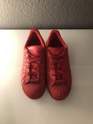 Adidas Zapatilla brogue rojo