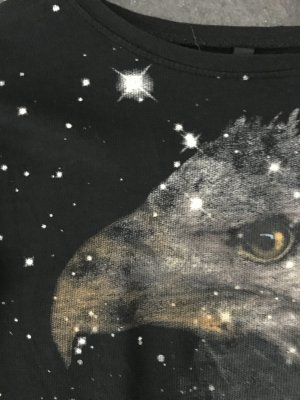 Sweat Adler von Zara