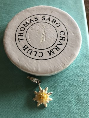 Thomas Sabo Pendant light grey real silver