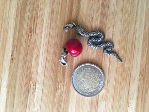 Thomas Sabo Pendentif rouge brique-argenté