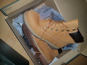 Timberland Damen Schuhe Gr 40