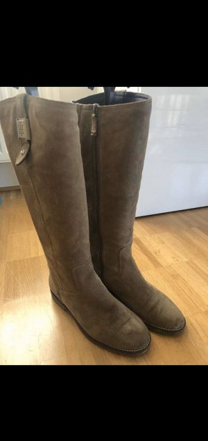 Tommy Hilfiger Jackboots taupe-brown