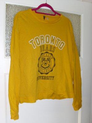 Toronto Sweat in gelb Größe L