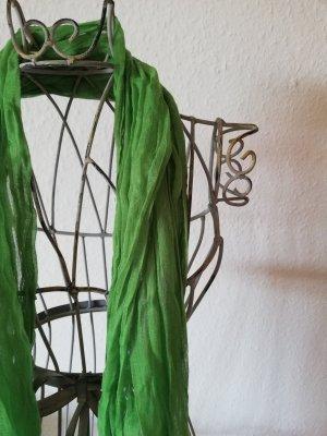 Kerchief grass green