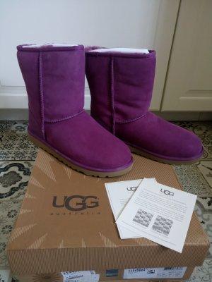 Ugg Australia Stiefel Gr. US 6 EU 37 ***NEU***