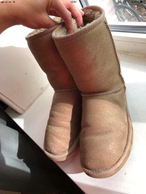 UGG Boots Beige / Gold