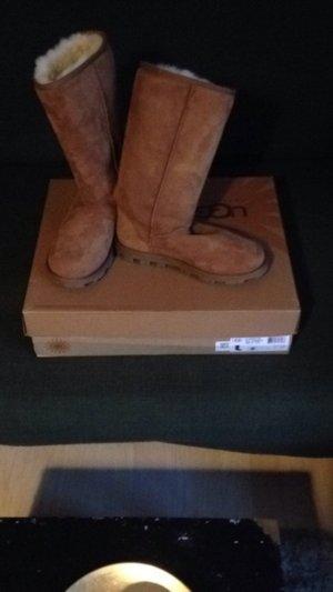 Ugg Boots Chestnut TALL*NEU*