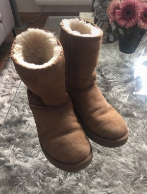 Ugg Boots Classic Chestnut 38