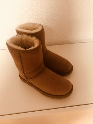 UGG Boots Classic Short Chestnut Gr. 37