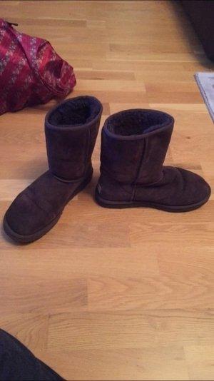 Ugg boots in brauna im guten zustand!