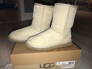 Ugg Boots neu ! Winterschuhe Stiefeletten 36