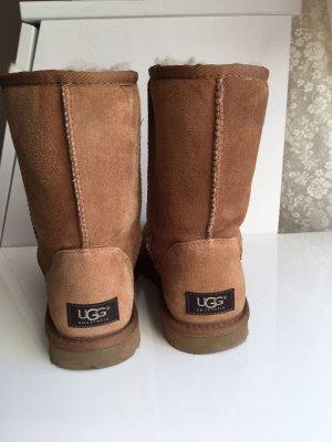 UGG classic short ll