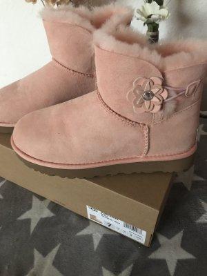 UGG Scarpina di lana albicocca-rosa pallido Pelle