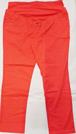 bpc Stretch broek donker oranje Katoen