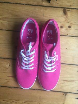 Vans Schuhe ungetragen