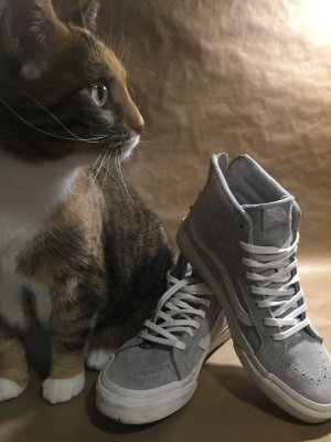 Vans Skate Sk8-hi Slim Zip 36.5/US 6.5/UK 4