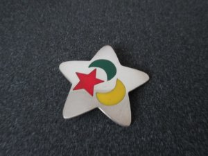 Broche multicolore argent