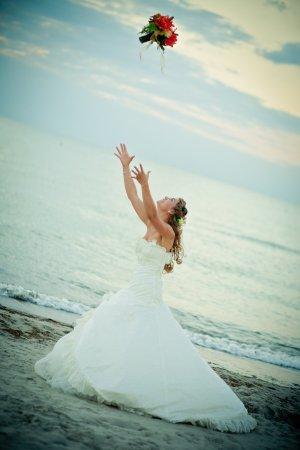 Pronovias Wedding Dress white-natural white