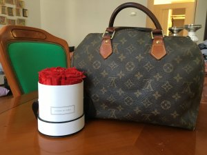 Vintage Louis Vuitton Speedy