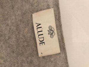 Allude Wool Jacket silver-colored