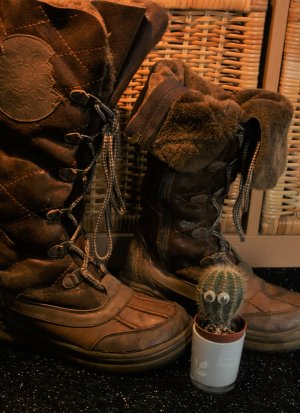 Winterstiefel / Boots / Botas de invierno