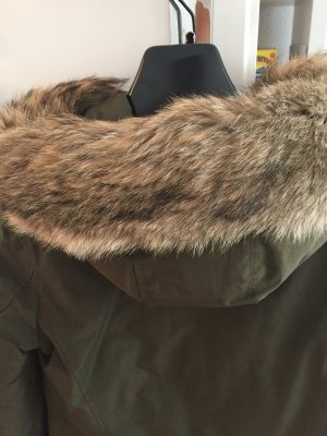 Woolrich Arctic Parka in xs in Olive