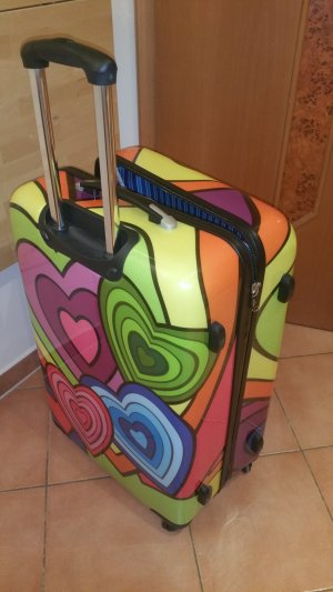 Travel Bag multicolored synthetic material