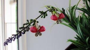 Wunderschöne vergoldete Ohrringe in Schmetterlings-Form