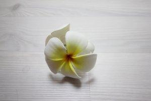 Accessorio per capelli bianco-giallo
