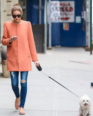 Zara Blogger Mantel.