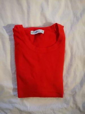 Zara, kirschroter kurzarm pullover
