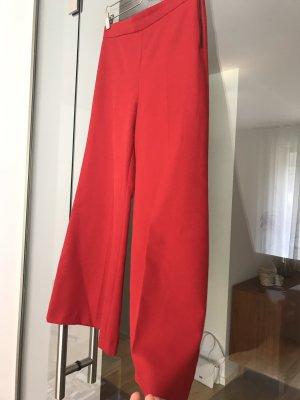 Zara Woman Pantalone culotte rosso scuro
