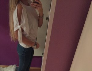 Zara Shirt Cutouts Neu Blogger