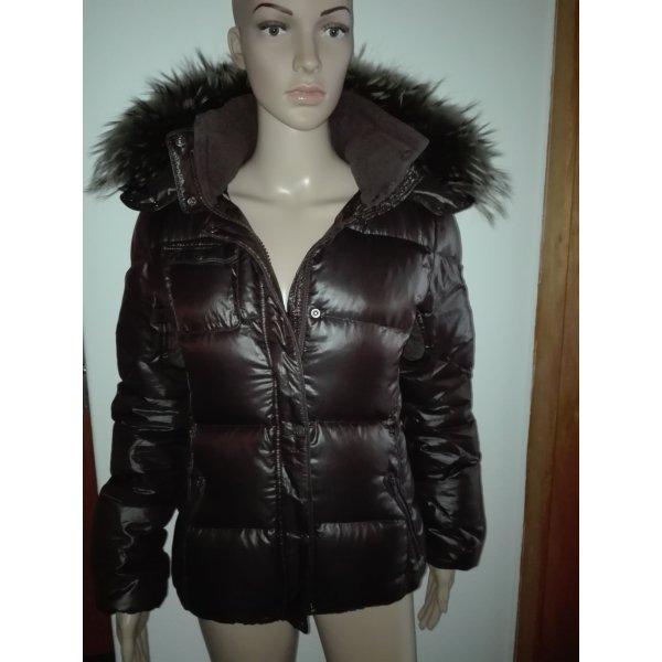 Echte Dauenen-Winter Jacke,in Glänzenden dunkel braune Farbe.
