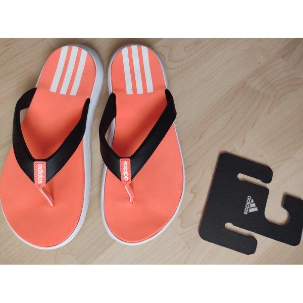 Flip Flops Adidas neu