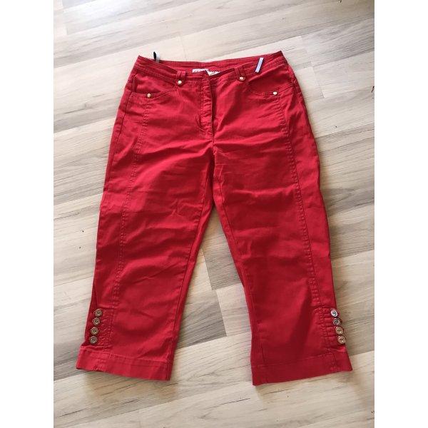 Hose- Rot