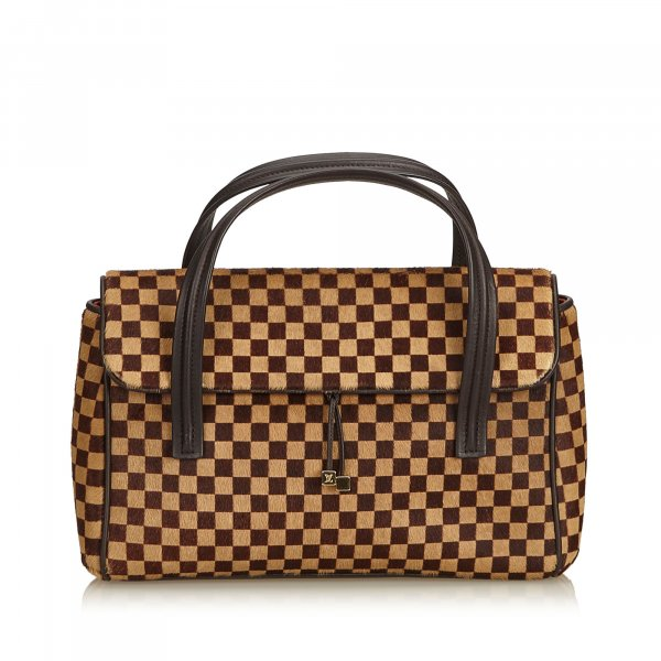 Louis Vuitton Damier Sauvage Lionne