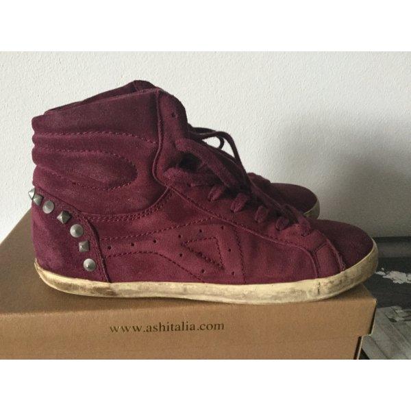 ASH Sneaker bordeaux