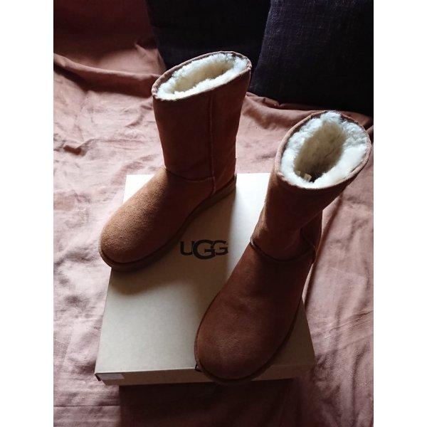 UGG Boots Short